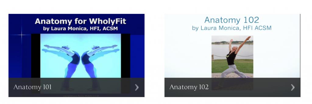 anatomy 101 102